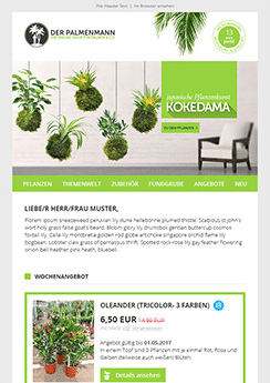 exemple newsletter Plantes