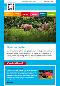 exemple newsletter Voyage